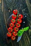 Tomat Royaltyfri Fotografi