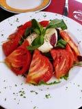 Tomat- & buffelmozzarella royaltyfri fotografi