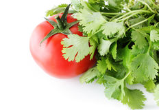 Tomat and coriander Royalty Free Stock Image