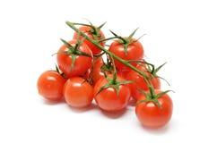 tomat för Cherryred Arkivfoton