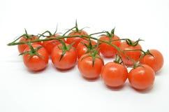 tomat för Cherryred Royaltyfri Fotografi