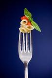 tomat för gaffelpastasås Fotografering för Bildbyråer