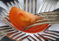 tomat för gaffelskivaansträngning Royaltyfri Bild