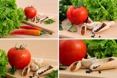 tomat för sallad för paprika för chilivitlökgreen Royaltyfria Bilder