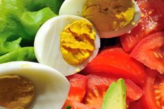 tomat för äggleafsallad Royaltyfria Foton