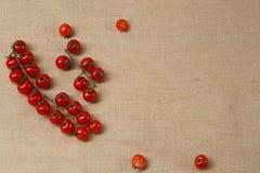 Tomat fresco della ciliegia che si trova su una superficie della tela di sacco fotografie stock libere da diritti
