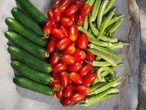 Tomat, gurkor och okra 1 livstid fortfarande Arkivbilder