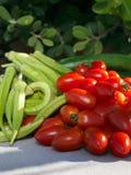 Tomat, gurkor och okra 1 livstid fortfarande Arkivfoton
