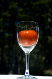 Tomat i vinexponeringsglas Arkivfoto