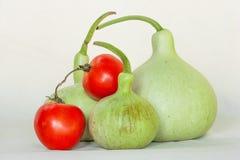 Tomat kalebass på vit bakgrund arkivfoton