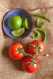 Tomat, limefrukt och kyla Royaltyfria Foton