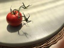 Tomat med den klippta stammen Arkivfoto