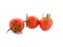 Tomat med stammen på vit Arkivfoton
