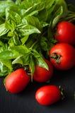 Tomat- och basilikasidor på svart bakgrund Arkivfoto