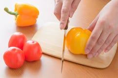 Tomat- och gurka- och pepparskärbrädamatlagning baktalar Arkivfoton
