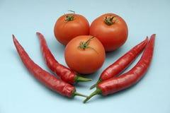 Tomat och paprika Arkivbild
