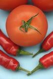 Tomat och paprika Fotografering för Bildbyråer