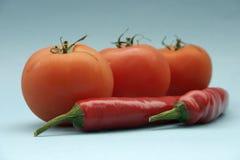 Tomat och paprika Arkivfoto