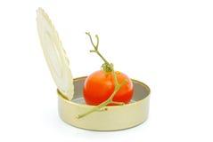 tomat på burk Royaltyfri Fotografi