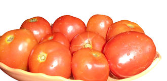 Tomat på maträtt Royaltyfri Bild