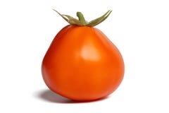 Tomat på vit Royaltyfria Bilder