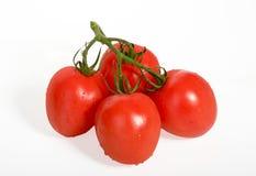 Tomat på white Arkivfoton