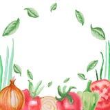 Tomat, peppar och lök för uppsättning för ram för vattenfärgvektorgrönsaker Arkivfoton