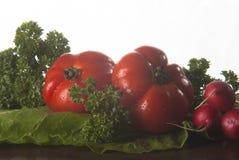 Tomat, rädisa, foderbeta och persilja på träyttersida Arkivfoton