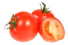 tomat tre Arkivbilder
