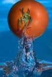 Tomat ut ur vattnet Royaltyfri Fotografi