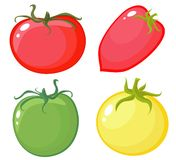Tomate illustration libre de droits