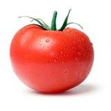 Tomate. Photos libres de droits