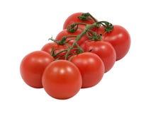 Tomate. Photo libre de droits