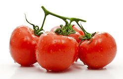 Tomate. Fotografia de Stock