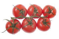 Tomate Imagem de Stock
