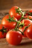 Tomate stockfotos