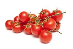 Tomate Foto de Stock