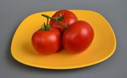 Tomate 5 Fotografia de Stock