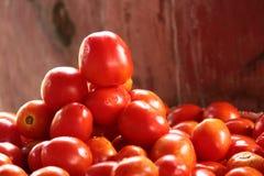 Tomate Photos stock
