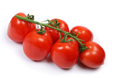 Tomate Fotografia de Stock