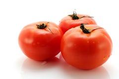 tomate Photo libre de droits