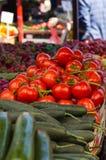 Tomate Lizenzfreies Stockbild