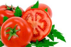 Tomate. Imagens de Stock