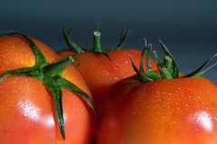Tomate_9730. Three red tomatoes on a dark background royalty free stock photography