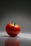 tomate 9731 Στοκ Εικόνα