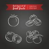 Tomate Ajuste dos frutos frescos, inteiro, meio e mordido com folha Ilustração do vetor Isolado no quadro-negro ilustração stock