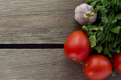 Tomate, alho, salsa sobre o direito de madeira do fundo fotos de stock royalty free