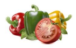 Tomate amarelo vermelho da pimenta verde no fundo branco Imagens de Stock