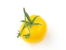 Tomate amarillo foto de archivo libre de regalías
