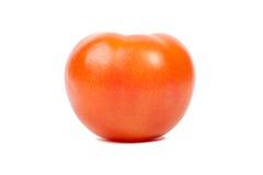 Tomate auf einem weißen Hintergrund. Stockfotografie